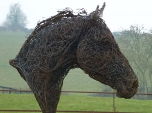Horse Head - Wire Sculpture of a Horse Head