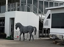 Horse delivery to Aintree